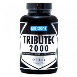 Big Zone Tributec 2000