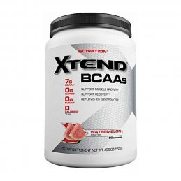 SCIVATION XTEND  90 porcijų...